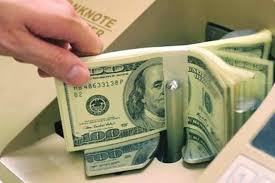 NHNN đang muốn coi USD như một loại tài sản