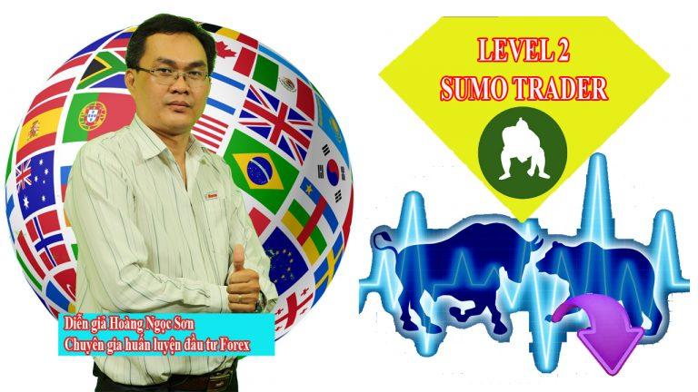 Khóa học Sumo Trader từ Chuyên gia Forex Hoàng Ngọc Sơn | hoangngocson.com